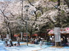 Yasukuni070329_056_1